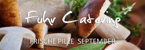 Fuhr Catering - Herbstangebot